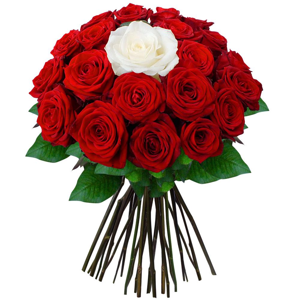 Заказ цветов поздравим рузаевка
